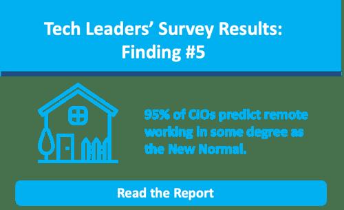 CIO Survey Infographic Banner 5