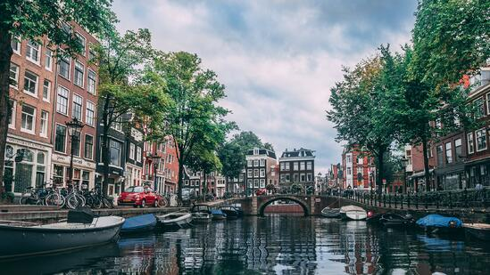 Working in Tech Jobs in the Netherlands